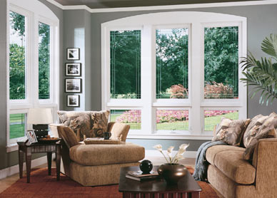 Windonew energy efficient windows in cleveland